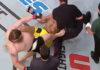 Roy Nelson kicks referee John McCarthy